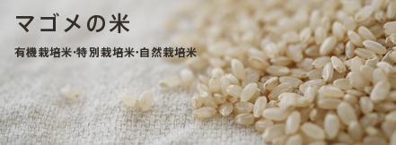 マゴメの米